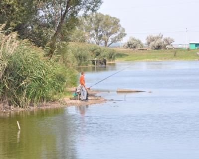 титовка брянская область рыбалка